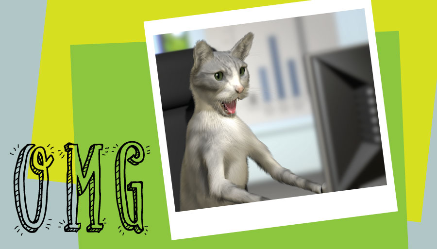 funny cat at computer OMG